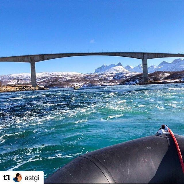 #redaktørliv på sitt beste! Reposter @astgi sitt fantastiske bilde fra Saltstraumen i Bodø fra helgas LLA-landsmøte